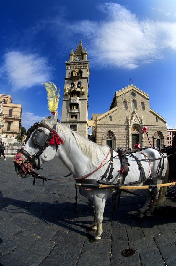 Wit paard voor de Kathedraal van Messina Duomo met astronomische klok in Italië stock foto's