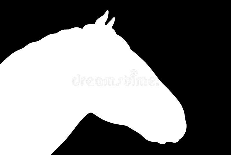 Wit paardhoofd over zwarte achtergrond royalty-vrije stock fotografie