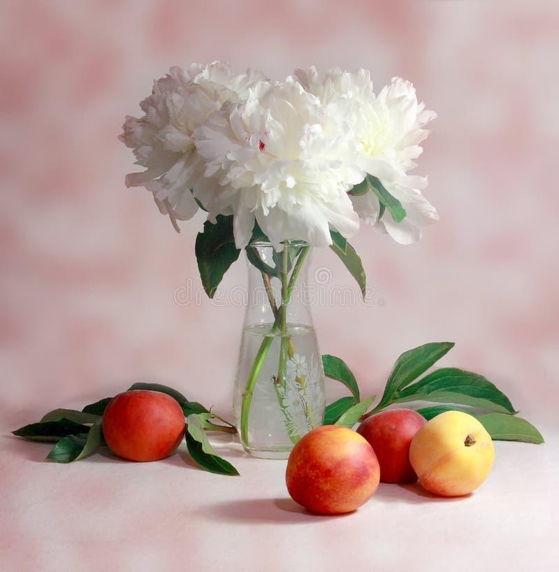 Wit pioenen en perzikenstilleven royalty-vrije stock afbeelding