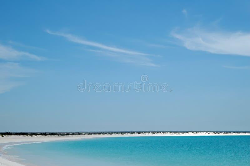 Wit toenemend strand royalty-vrije stock foto