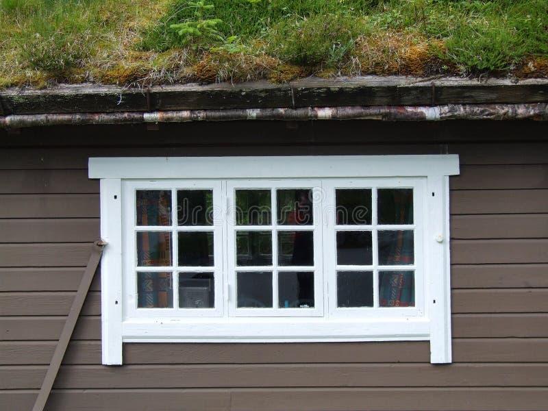 Wit venster en dak met gras stock afbeelding