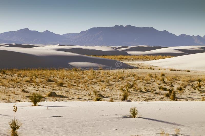 Wit Zand New Mexico stock afbeelding