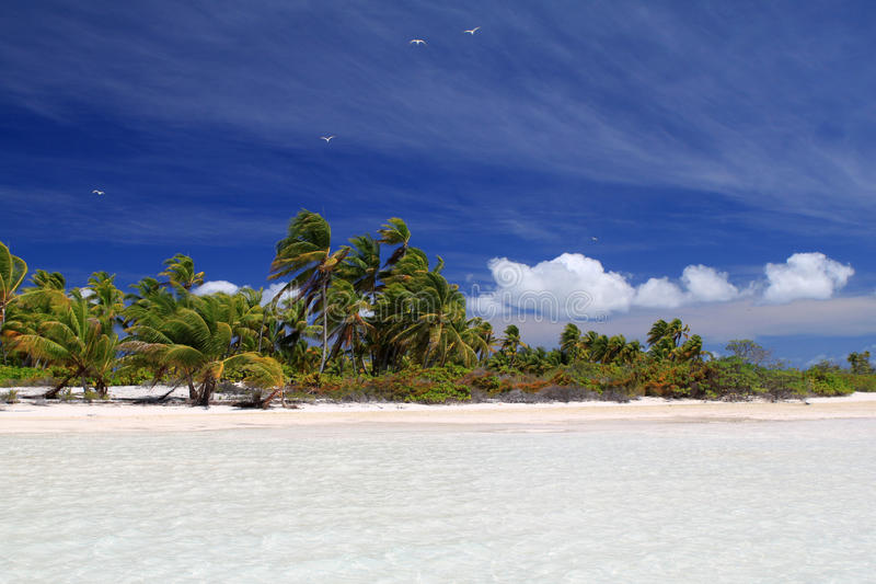 Wit zand tropisch strand stock afbeelding