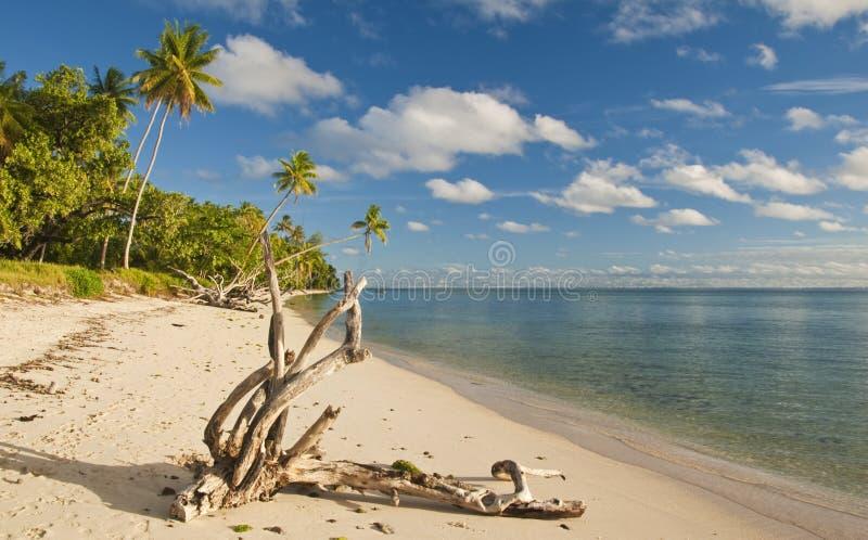 Wit zandig strand stock afbeeldingen