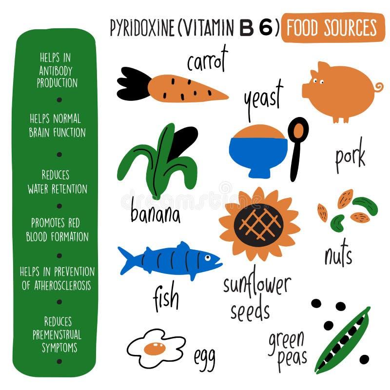 Witaminy b 6 karmowych źródeł, pyridoxine Wektorowa kreskówki ilustracja, informacja o świadczeniach zdrowotnych witaminy b 6 i royalty ilustracja