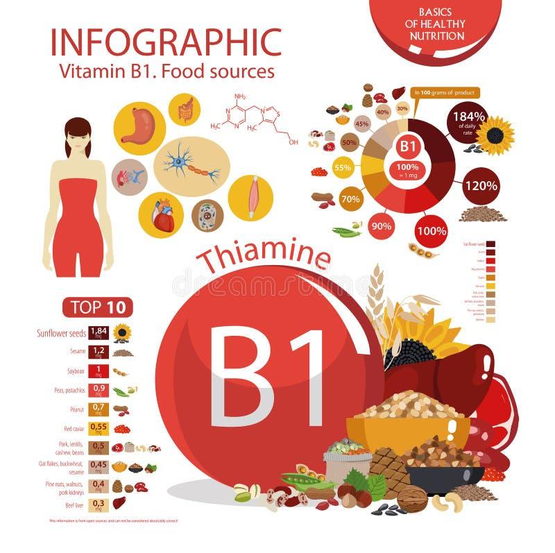 Witaminy B1 thiamine Infographics: organicznie produkty ilustracji