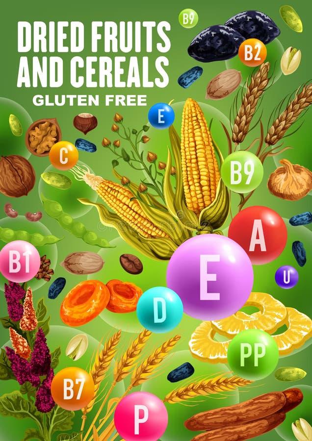 Witaminy w wysuszonych owoc, dokrętkach i zbożach, ilustracji