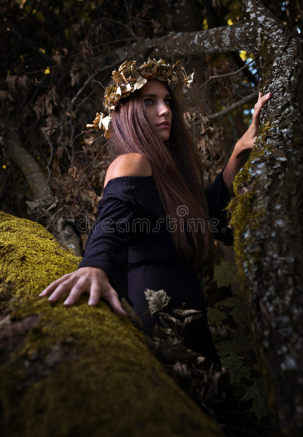 Witch in dark forest. The young beautiful witch in dark forest royalty free stock images