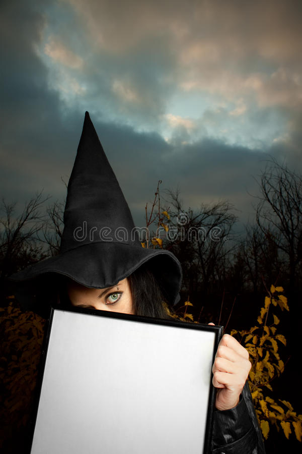 Download Witch with empty banner stock image. Image of banner - 24478245