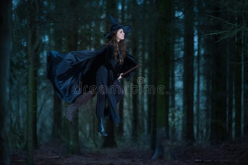 Witch flying on a broom. In the forest royalty free stock image