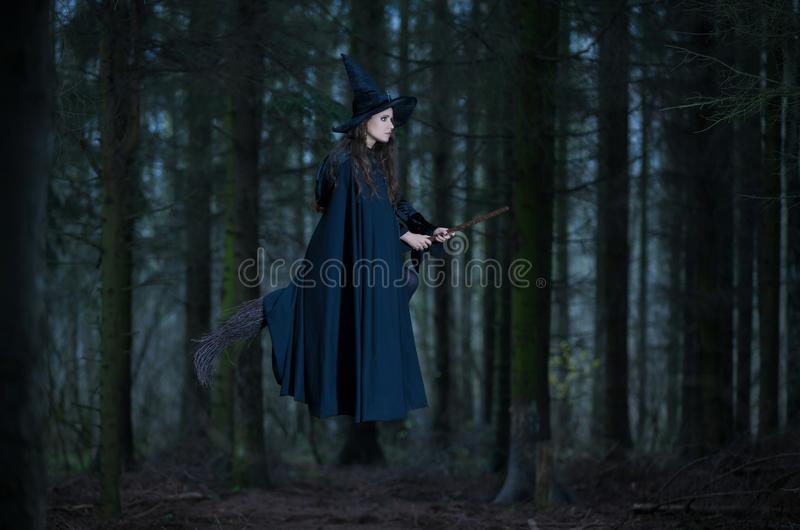 Witch flying on a broom. In the forest royalty free stock photography