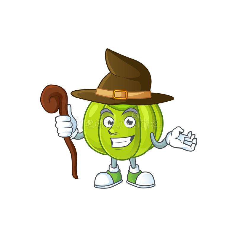 Witch green pumpkin ripe on a white background. Vector illustration stock illustration