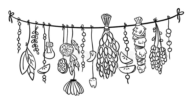 Witch herbs boho hanging doodle decoration. Vector isolated illustration vector illustration