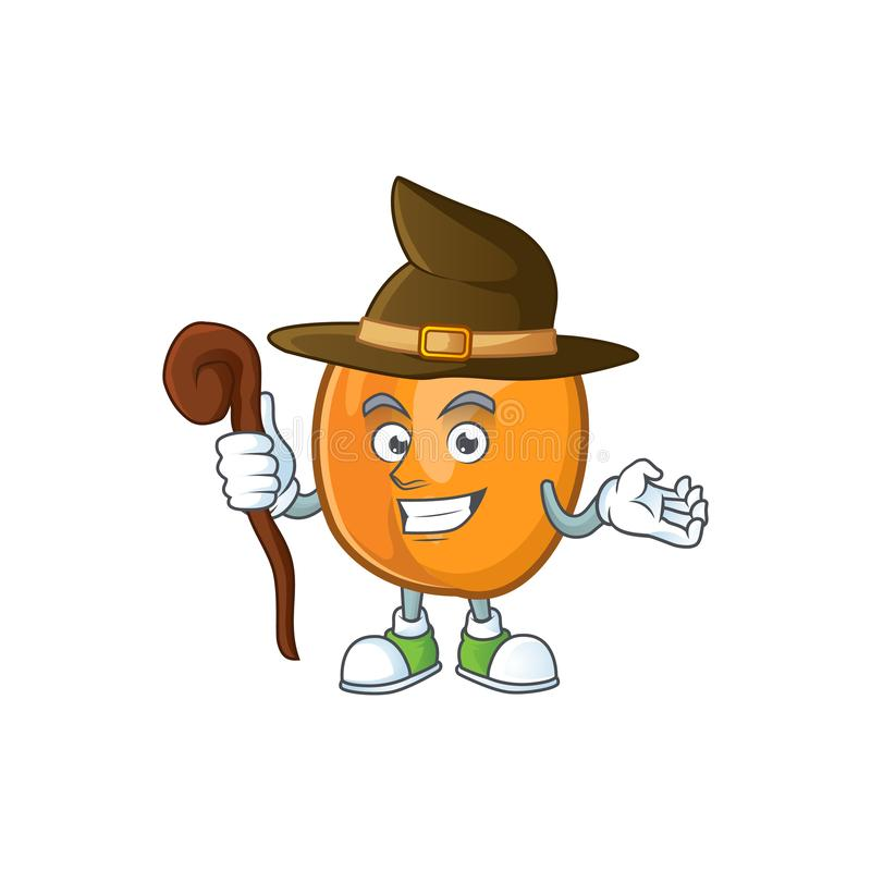 Witch ripe apricot character mascot of cartoon. Vector illustration royalty free illustration