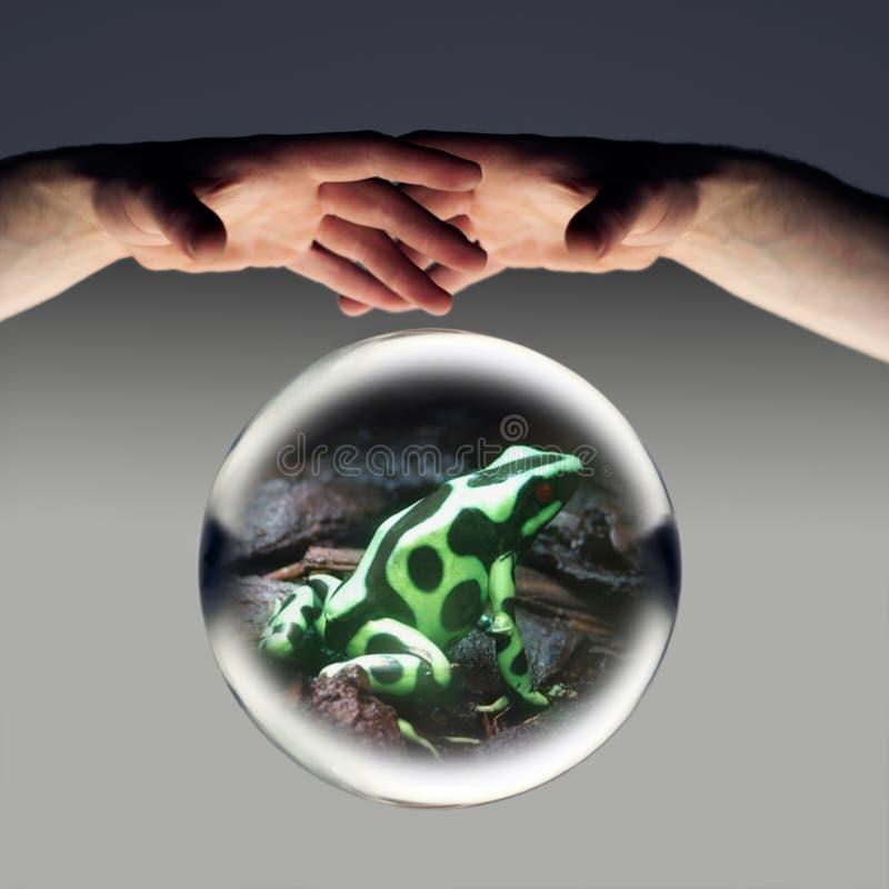Download Witchcraft stock image. Image of crash, dark, halloween - 4834443