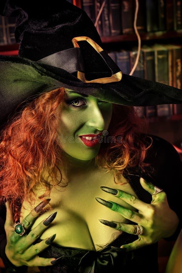 Witcherytrollkarl arkivbild