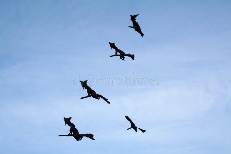 Witches Kites Stock Photo