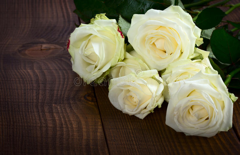 Wite rosor royaltyfria foton