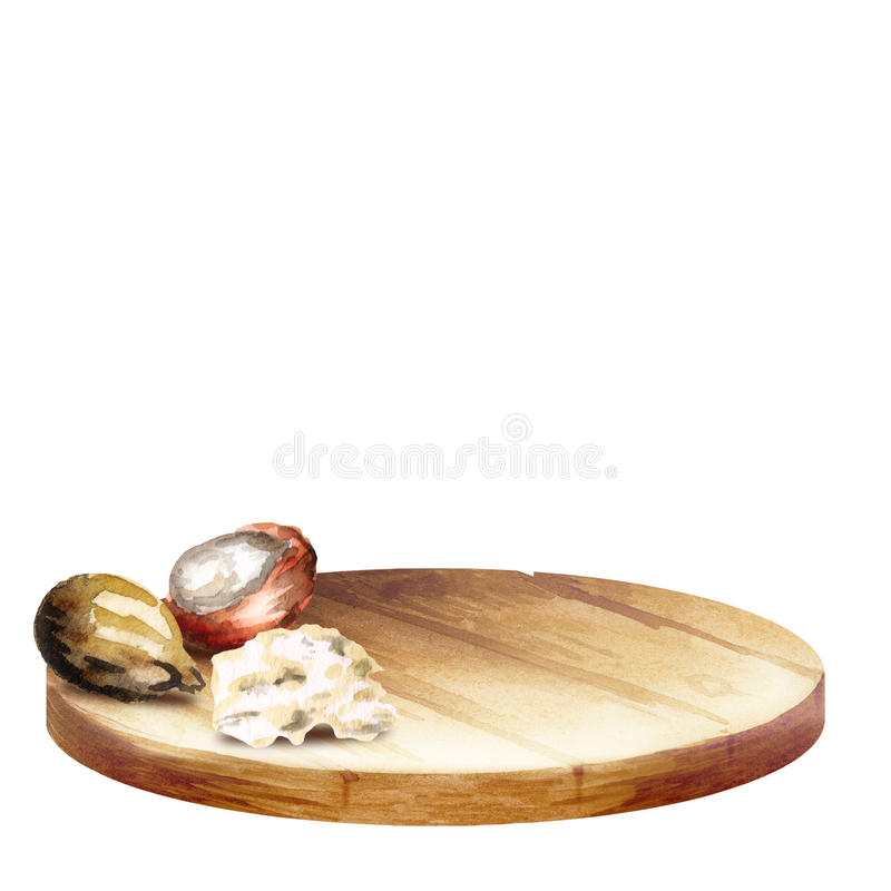WithBackground del fondo con las nueces del disco y del mandingo con mantequilla Conos del handplatter y del pino de la acuarela  fotografía de archivo libre de regalías