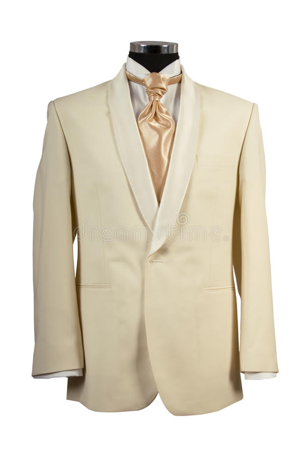 Download Withe Suit And Gold Tie For Ceremony Stock Photo - Image: 19849098