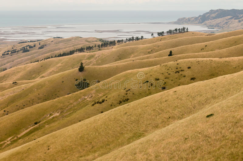 Wither Hills royalty free stock photos