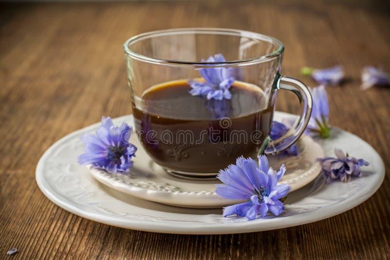 Witlofbloemen en thee van witlof stock afbeelding