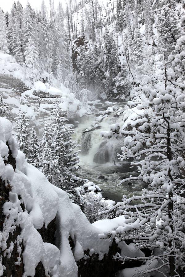 witnter yellowstone водопадов np стоковые фото