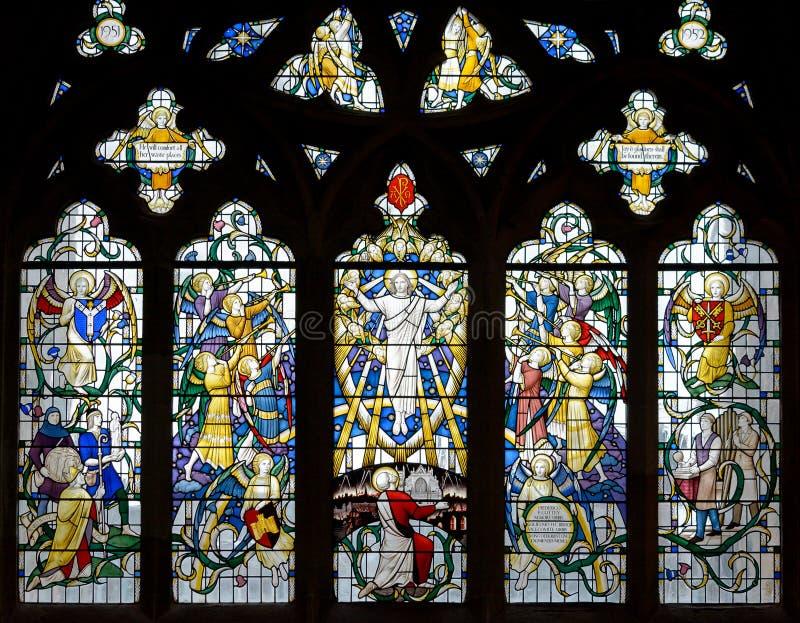 Witraż w Exeter katedrze, Nave Południowy Nadokienny b, Trzyma obrazy royalty free