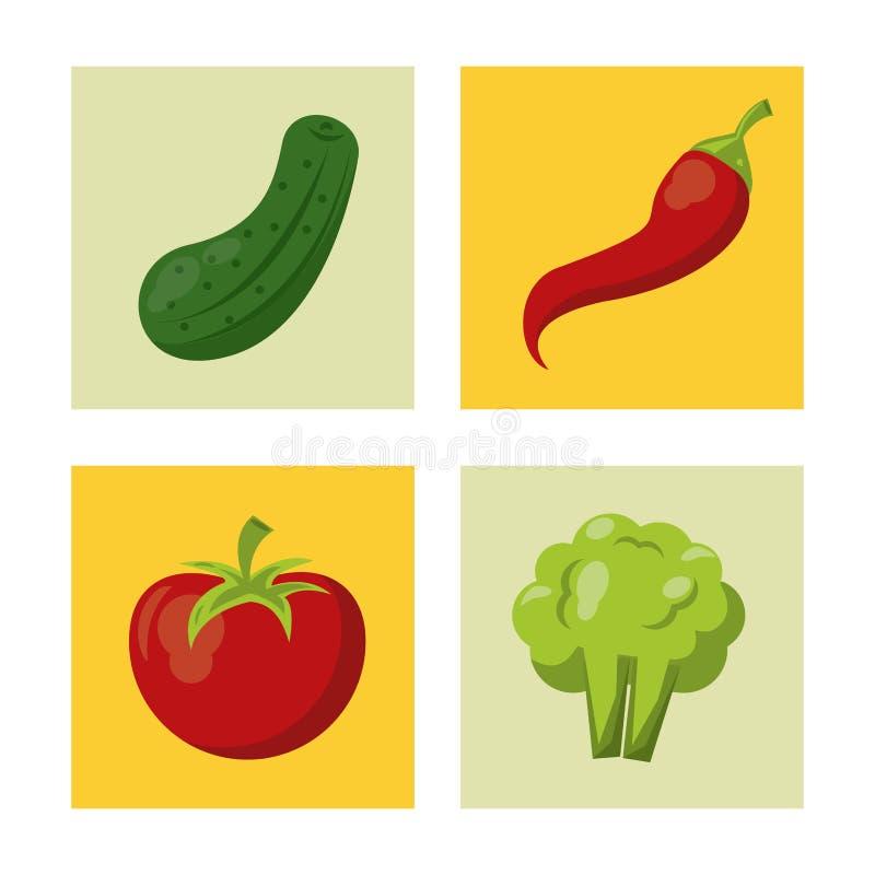 Witte achtergrond met kleurrijke vierkanten met komkommer en Spaanse pepers en tomaat en broccoli vector illustratie