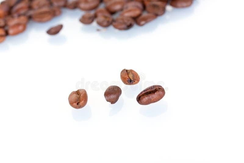 Download Witte Achtergrond Van Koffiebonen Stock Foto - Afbeelding bestaande uit horizontaal, achtergronden: 10784302