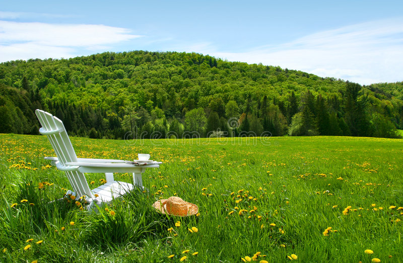 Witte adirondackstoel op een gebied van lang gras stock foto's