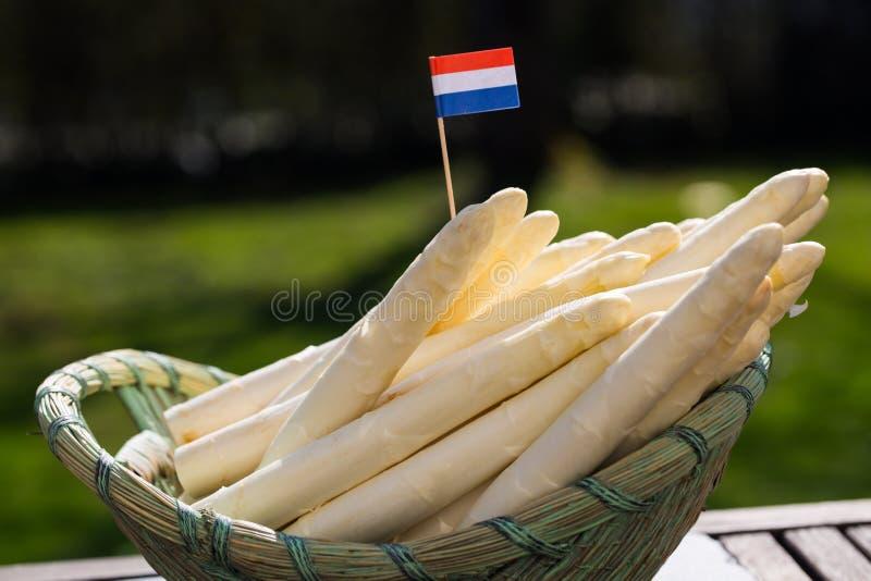 Witte asperge met Nederlandse vlag royalty-vrije stock foto's