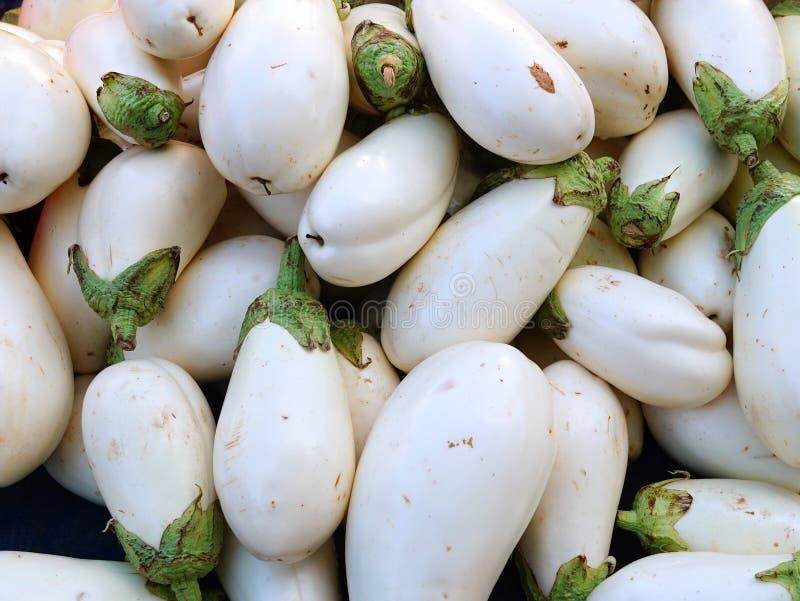 Witte aubergines stock afbeeldingen