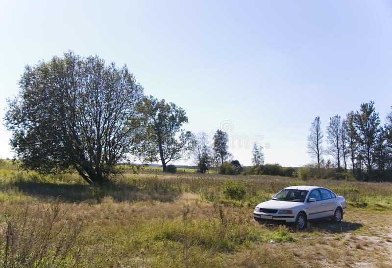 Witte auto in het land stock fotografie