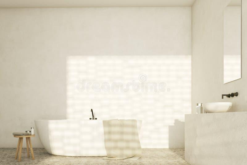 Witte badkamers met gootstenen, voorzijde stock illustratie