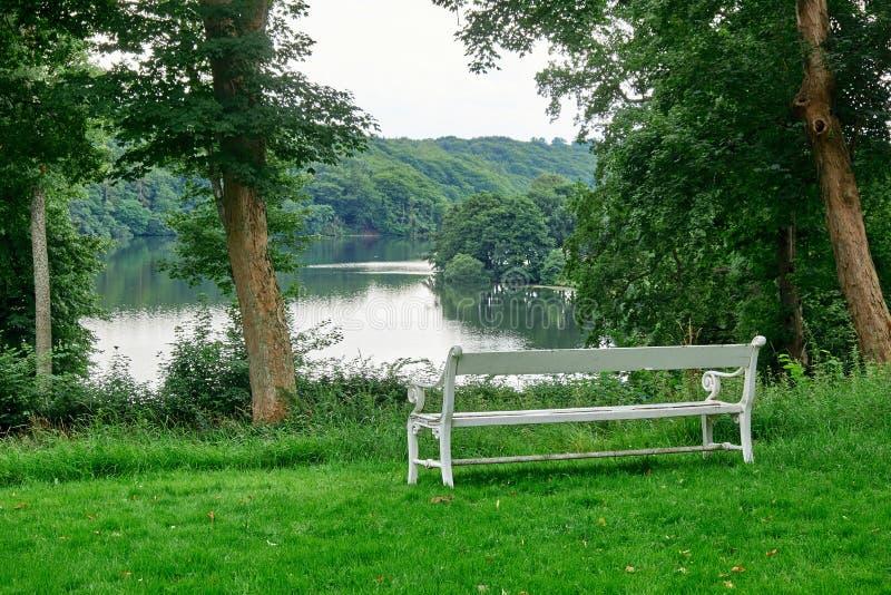 Witte bank die een meer en een bos onder ogen zien royalty-vrije stock foto