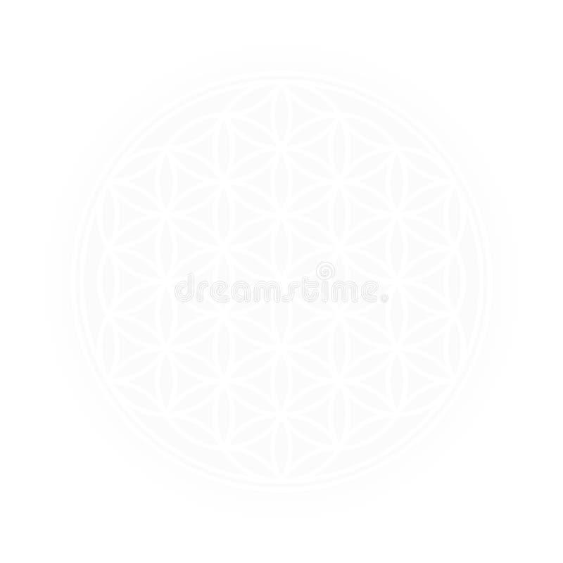 Witte Bloem van het Levens Helder Licht royalty-vrije illustratie
