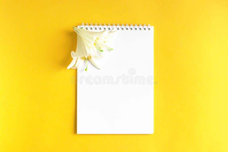 Witte bloemen met Blocnote op gele achtergrond stock fotografie