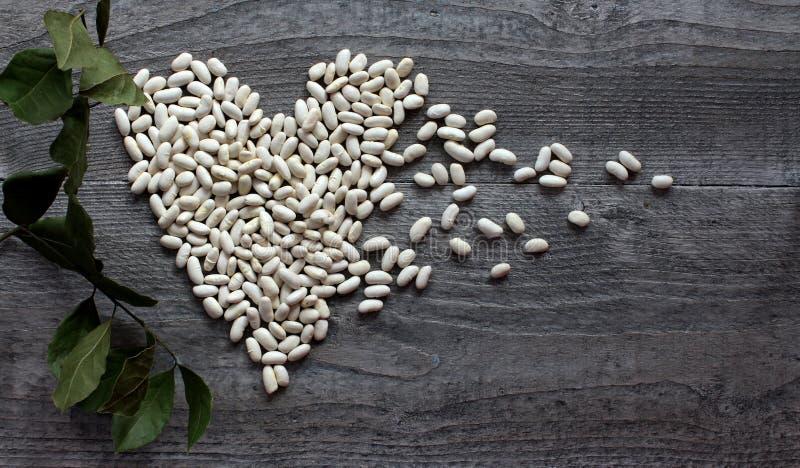 Witte bonen als symbool het gezonde eten royalty-vrije stock foto's
