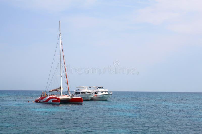 Witte boten, catamaran en drijvende mensen in het Rode overzees, Egypte stock foto's