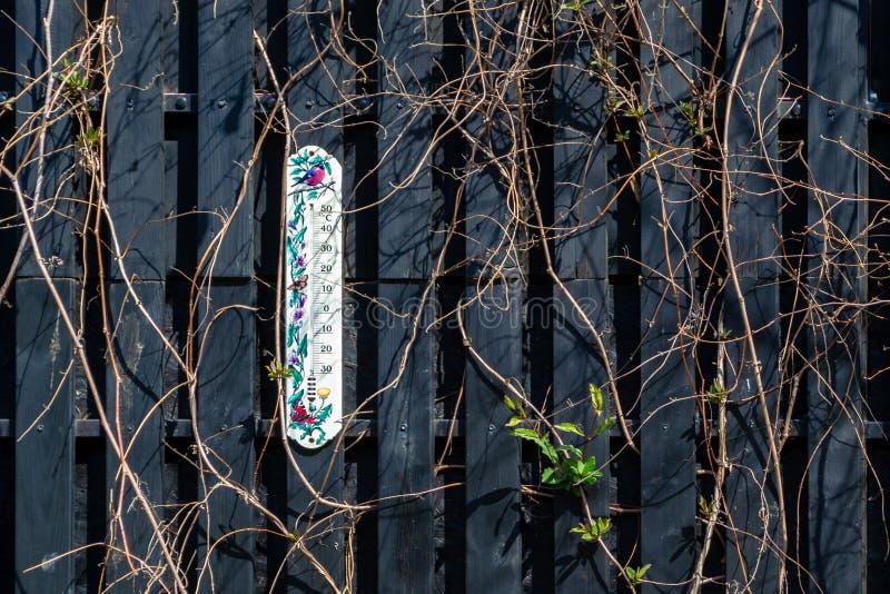 Witte buitenthermometer, met geschilderde vogels en vlinders op een donkere houten omheining, met rond het beklimmen van scandent royalty-vrije stock afbeelding