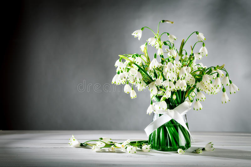 Witte de Lelietribune van bloemenloddon in een glasvaas op witte houten raad op een grijze achtergrond stock afbeelding