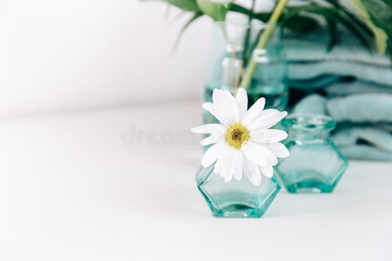 Witte de lentebloemen en deken stock foto