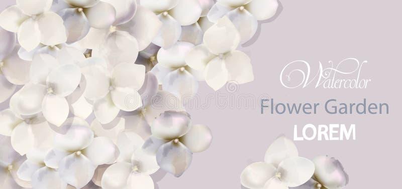 Witte de waterverfvector van de bloemenkaart Mooie huwelijksuitnodiging, ceremonie, sparen de datum, groeten royalty-vrije illustratie