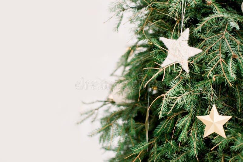 Witte die Kerstmissterren op een groen net takje op witte achtergrond worden opgeschort royalty-vrije stock foto
