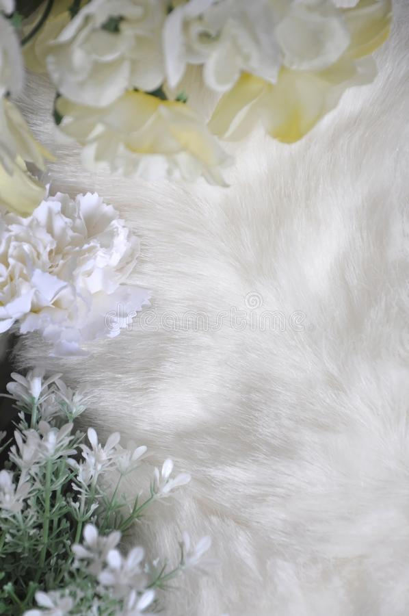 Witte die Woltextuur met Bloemen op Grens wordt verfraaid stock afbeeldingen
