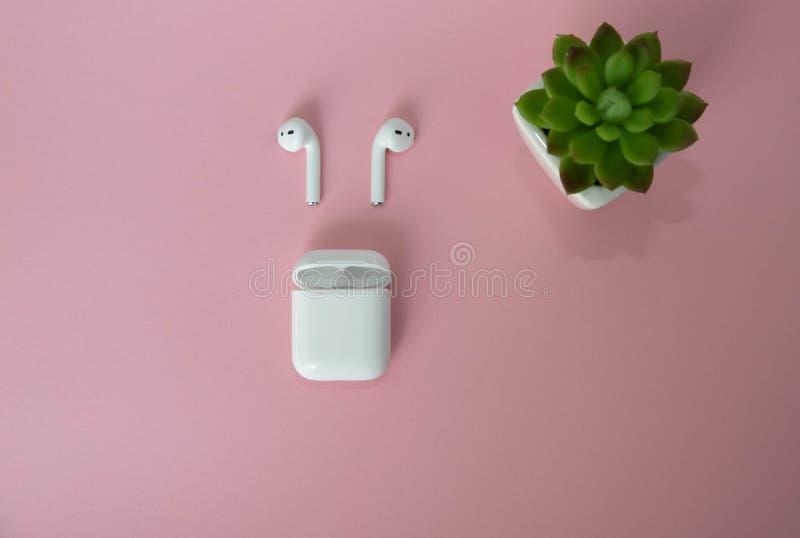 Witte draadloze hoofdtelefoons met een lader voor hen Groene binnenbloem naast draadloze hoofdtelefoons op een roze achtergrond e royalty-vrije stock afbeelding