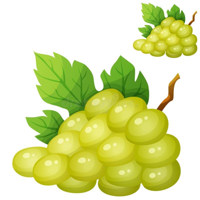 Witte druif Beeldverhaal vectorpictogram vector illustratie
