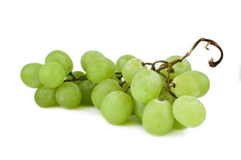 Witte druiven royalty-vrije stock foto's