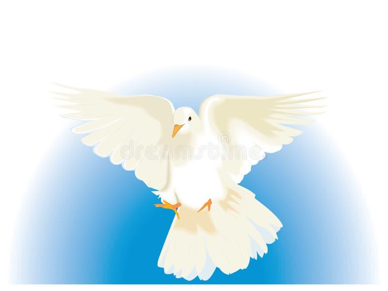 Witte Duif vector illustratie